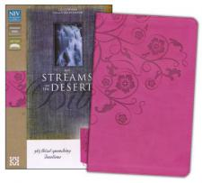 NIV Streams in the Desert Bible: Duo tone raspberry