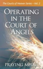 Operating in the Courts of Angels
