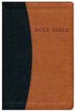 KJV Personal Size Giant Print Reference Bible, imitation lea