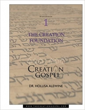 Creation Gospel Workbook One: The Creation Foundation (The Creation Gospel)