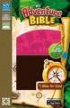 Adventure Bible - Pink & Brown